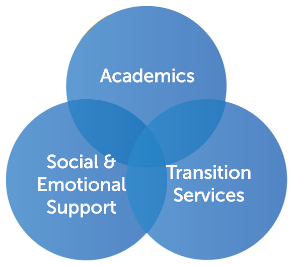 diagram of similarities between academics, transition services, and additional emotional support